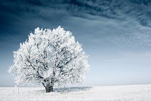 Image result for snow and storms