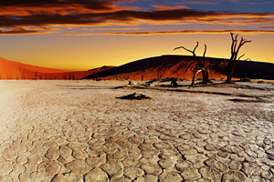 Image result for heat and drought